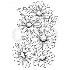 Woodware Clear Stamps - Five Daisies