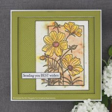 Woodware Clear Stamps - Cosmos Collection