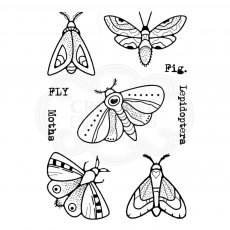 Woodware Clear Stamps - Moths