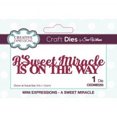 Sue Wilson Craft Dies - Mini Expressions Collection - A Sweet Miracle